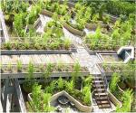 Green roof in Sandton (source: Insite Group)
